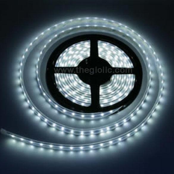 LED Dây 5050 Trắng Loại Dán Dài 5M