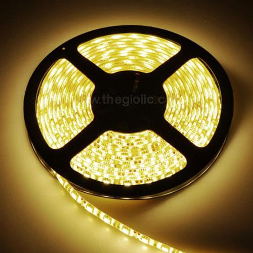 LED Dây 5050 Trắng Vàng Loại Dán Dài 5M