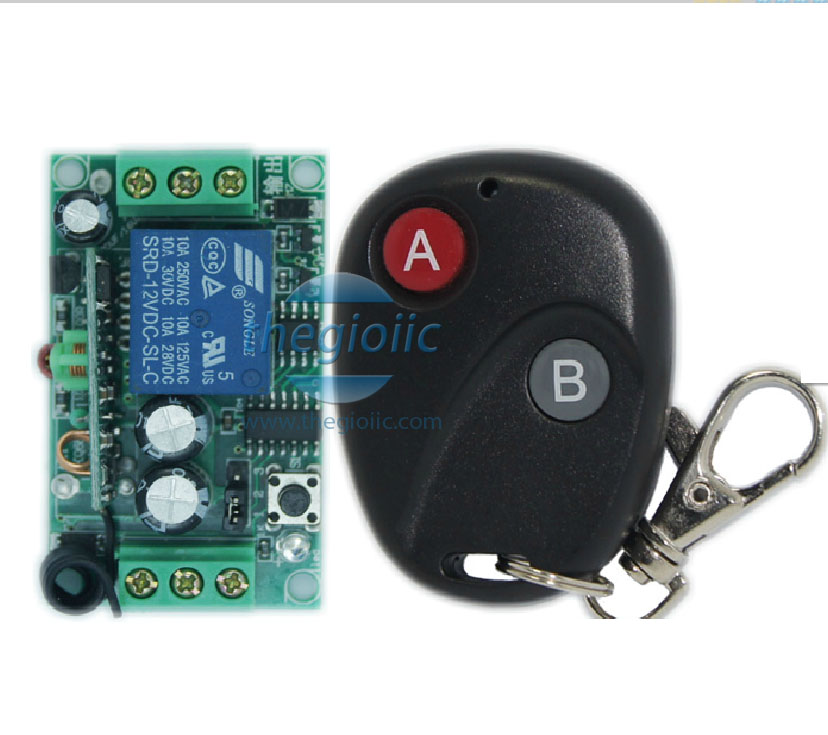 10A-RS-2C-12V Remote Switch