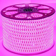 LED Dây Màu Hồng 5050 Không Thấm Nước